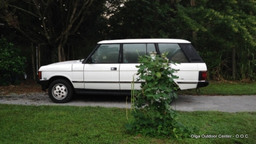 "Aimee loves her roomy Range Rover Classic. It is a LWB ""County"", perfect for her high-adventure family"